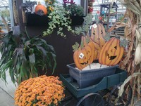 And fall decorating ideas...