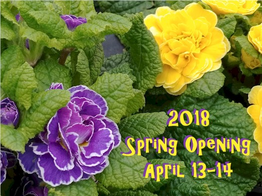 2018 Spring Opening at W.W.
